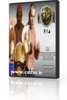 تصویر فینال مسابقات k1 2002 دو دی وی دی